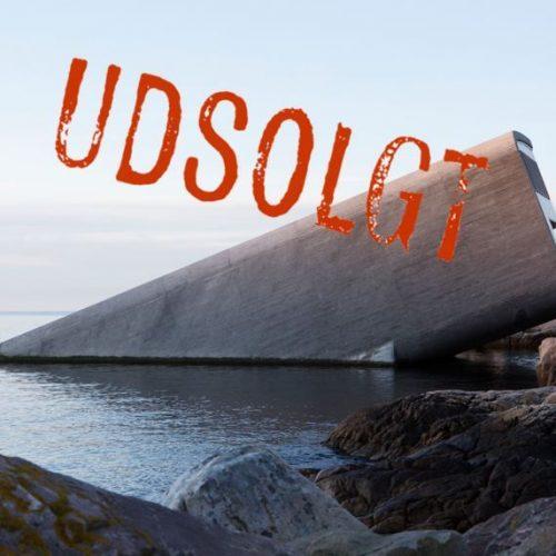 under_udsolgt